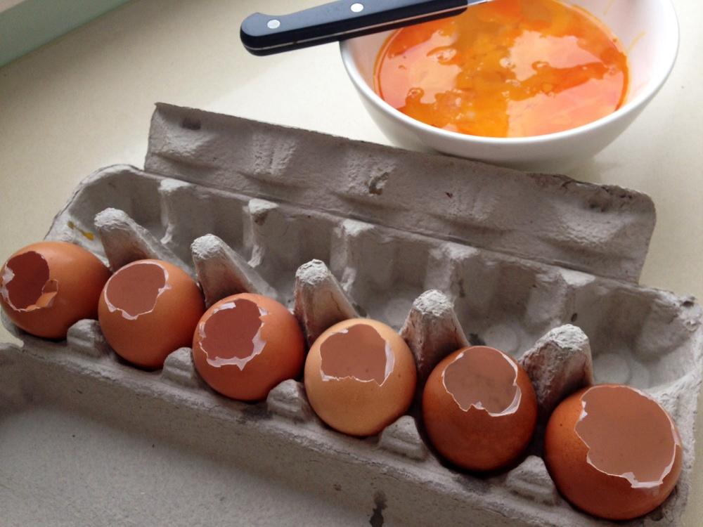 Egg Shell.JPG
