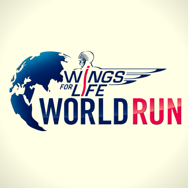 Wings For Life World Run App: Research project, innovation, business strategy, global presentation