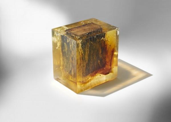 Nucleo_Wood-Fossil-Stool-600x428.jpg