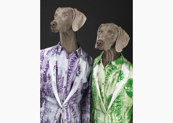 William-Wegman-1.jpg