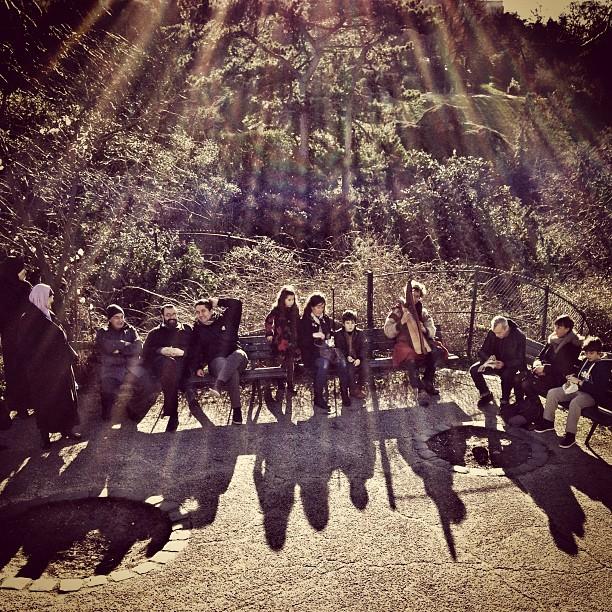 Sous le #soleil sur les #butteschaumont près d'un joueur de #harpe (cherchez le) #paris #sun #rayoflight #shadow