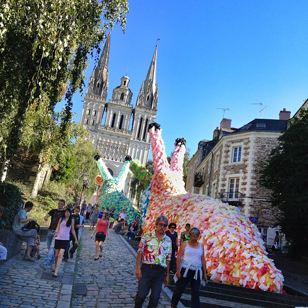 Des grosses limaces dans la montée Saint-Maurice. C'est ça aussi les #accrochecœurs #heureangevine #angers #nord #north (Pris avec Instagram)