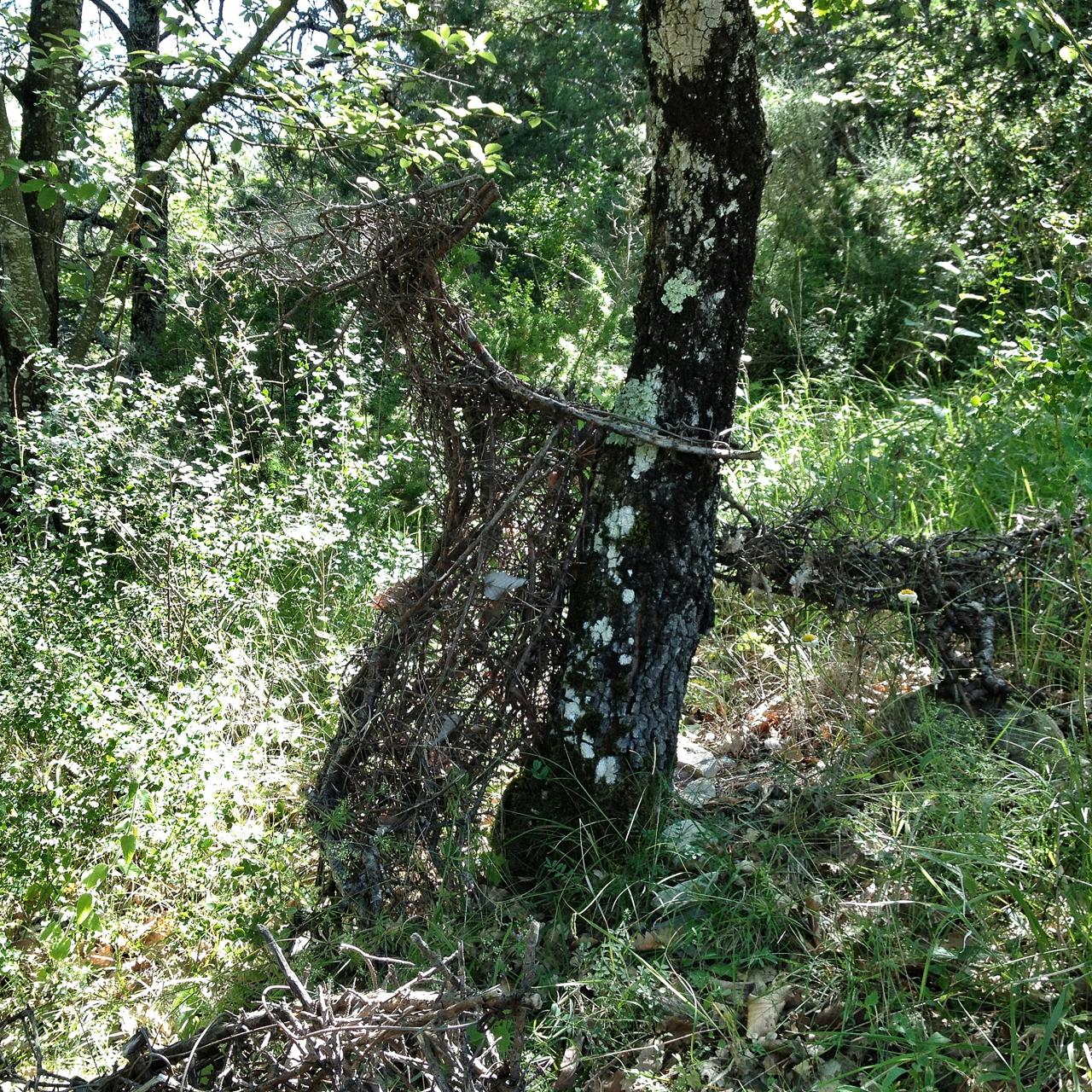 """Une chèvre se cache dans la broussaille. Sauras-tu la retrouver?  Dans la série, je réalise de belles choses dans la nature, voici """"Les Piquettes, chèvres de broussailles"""", de Myriam De Manoir, vues aux détours de chemins sur les hauteurs de Vesc (Drôme)."""