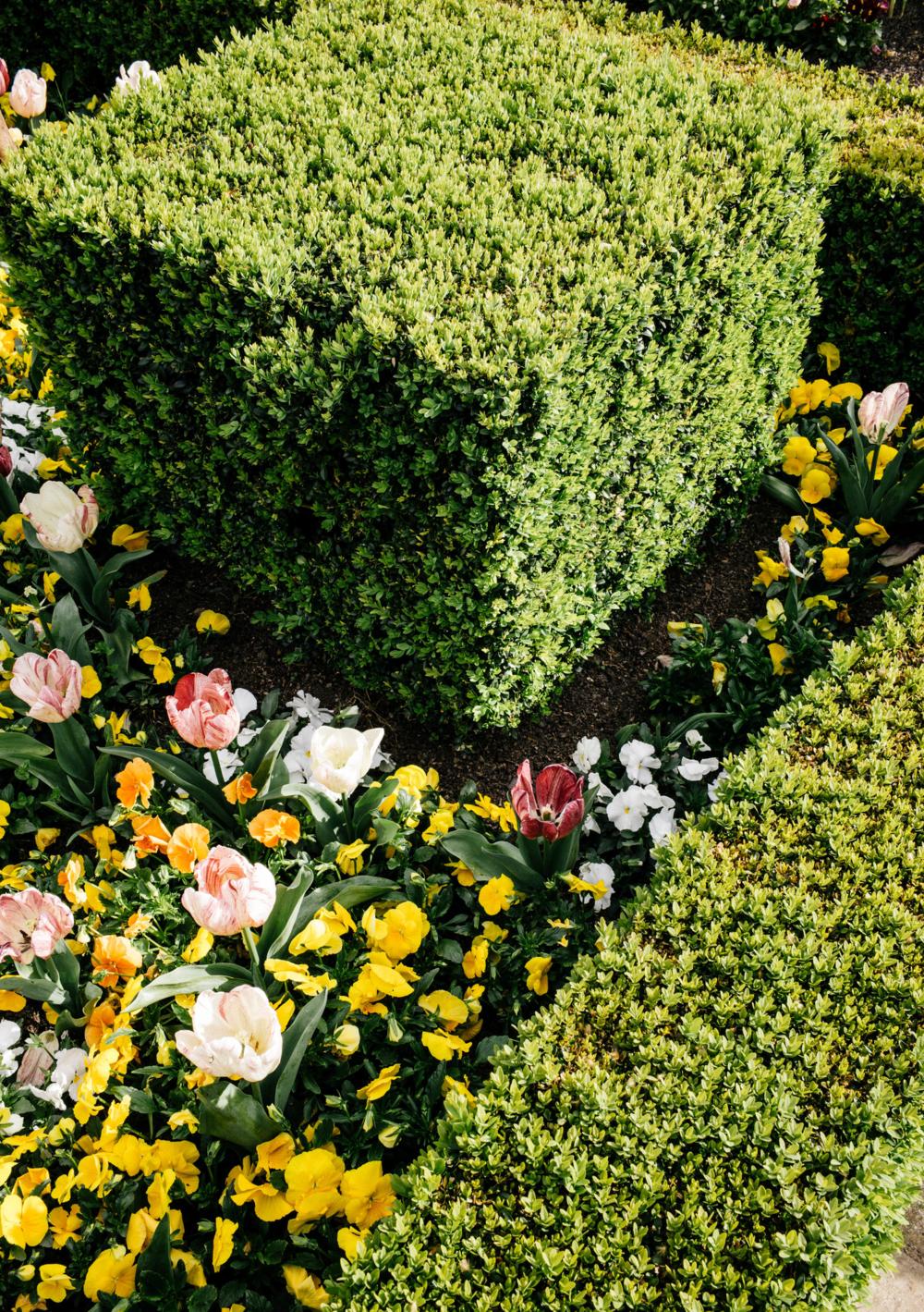 Arboretum (8 sur 27).jpg