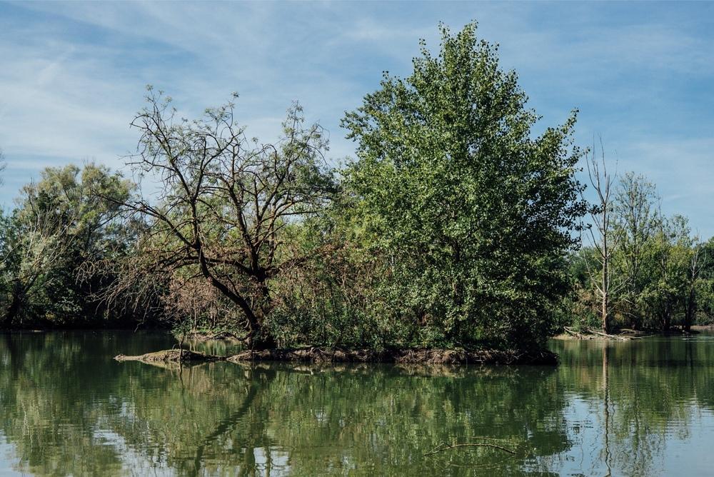 Lac 2.jpeg