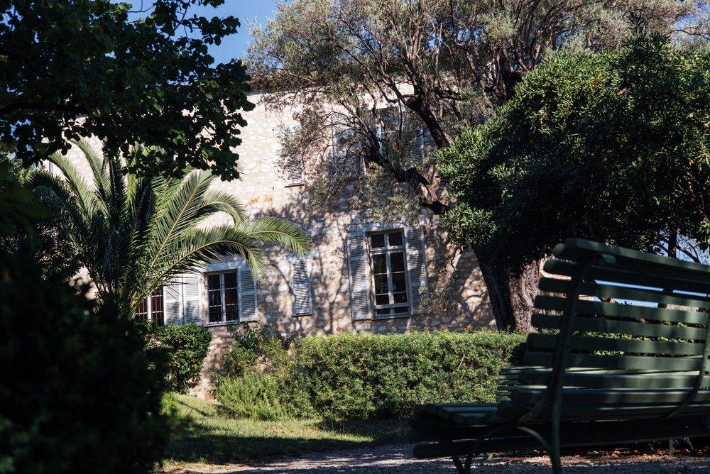 Renoir 3.jpeg