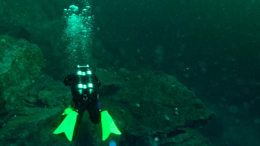 dykketur 28.jpg