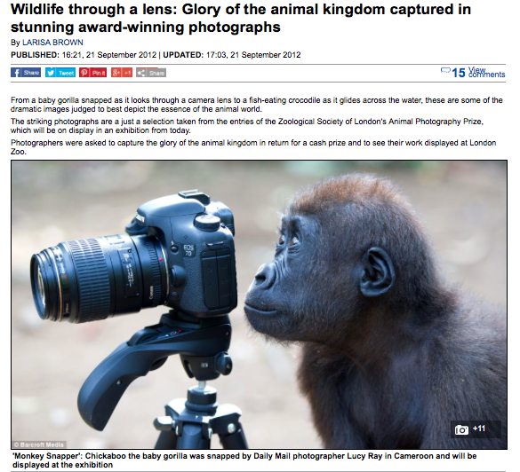 http://www.dailymail.co.uk/news/article-2206689/Wildlife-lens-Glory-animal-kingdom-captured-stunning-award-winning-photographs.html