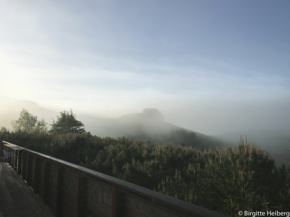 Fog drifting in over Horse Hill, Mill Valley, CA