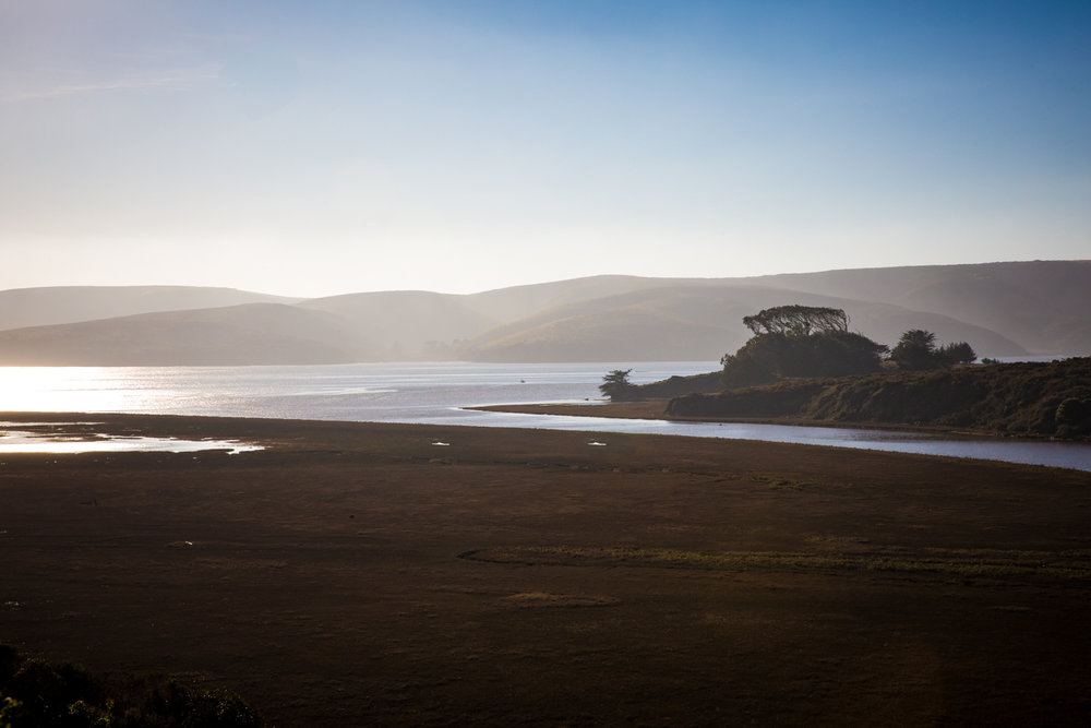 Sunny afternoon in Tomales Bay, Point Reyes