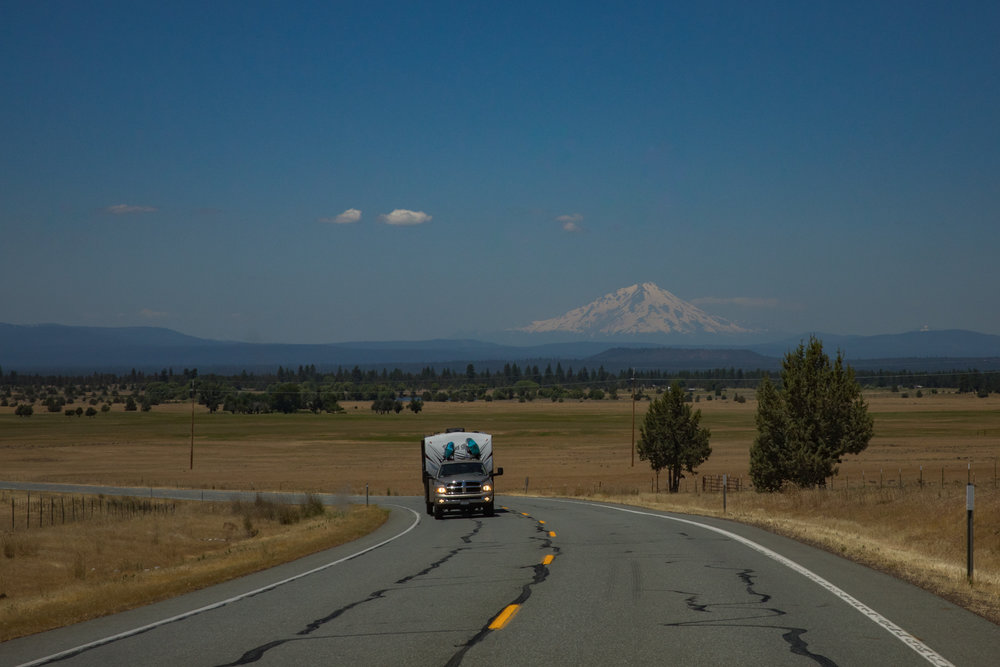 Mt. Shasta. We drove all the way around it and even with the sweltering heat the snow was still there and we could not pass through Mt. Lassen national park because of the it. I love the long views and the yellow lines on the roads. It's road trip heaven in CA.