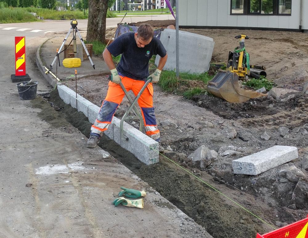 Vågen & Hansen Utemiljø ASbestår av anleggsgartnere lokalisert i Kristiansand, prosjektene strekker seg fra større offentlige prosjekter i form av utforming av skolegårder,  bysentrum, idrettsplasser til vedlikeholdsavtaler for borettslag, og mindre private oppdrag. Firmaet har en moderne maskinpark og mange fagutdannede anleggsgartnere.