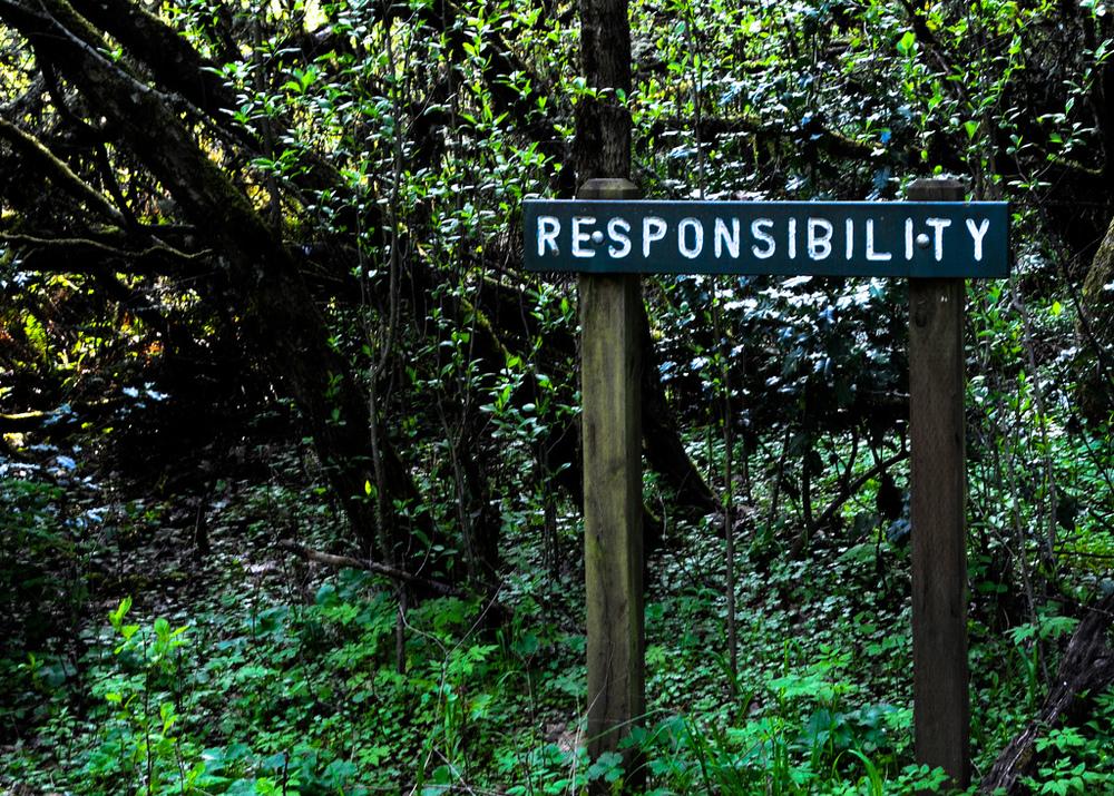 Responsibility by nosha.jpg