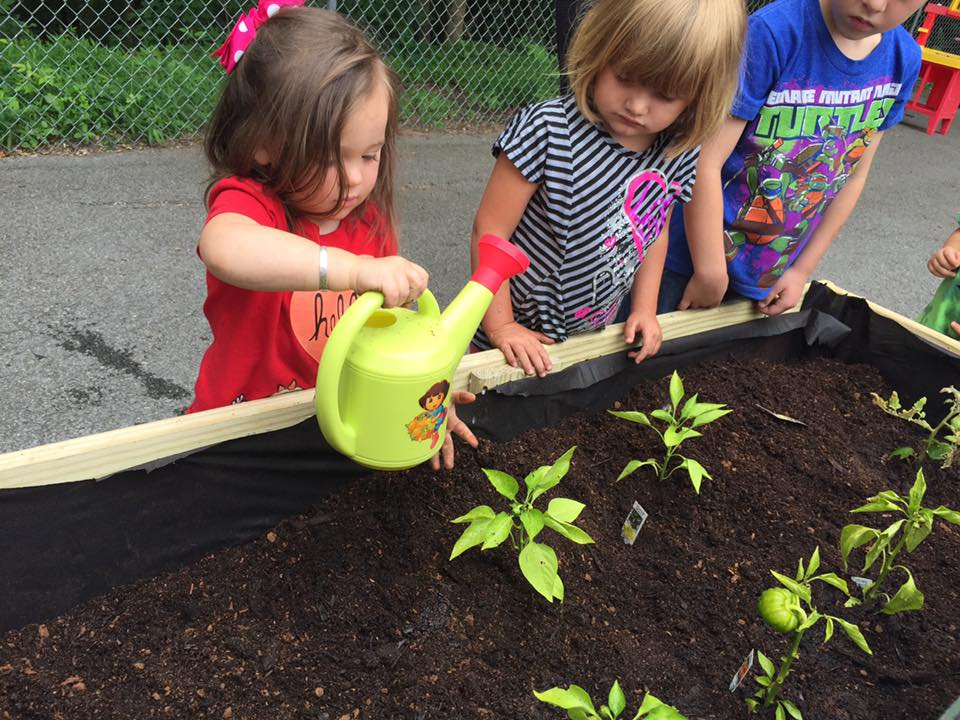 Gardening at Little Learner's.jpg