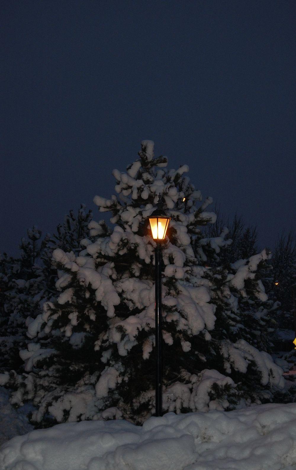 Light my Way on a Winter Night