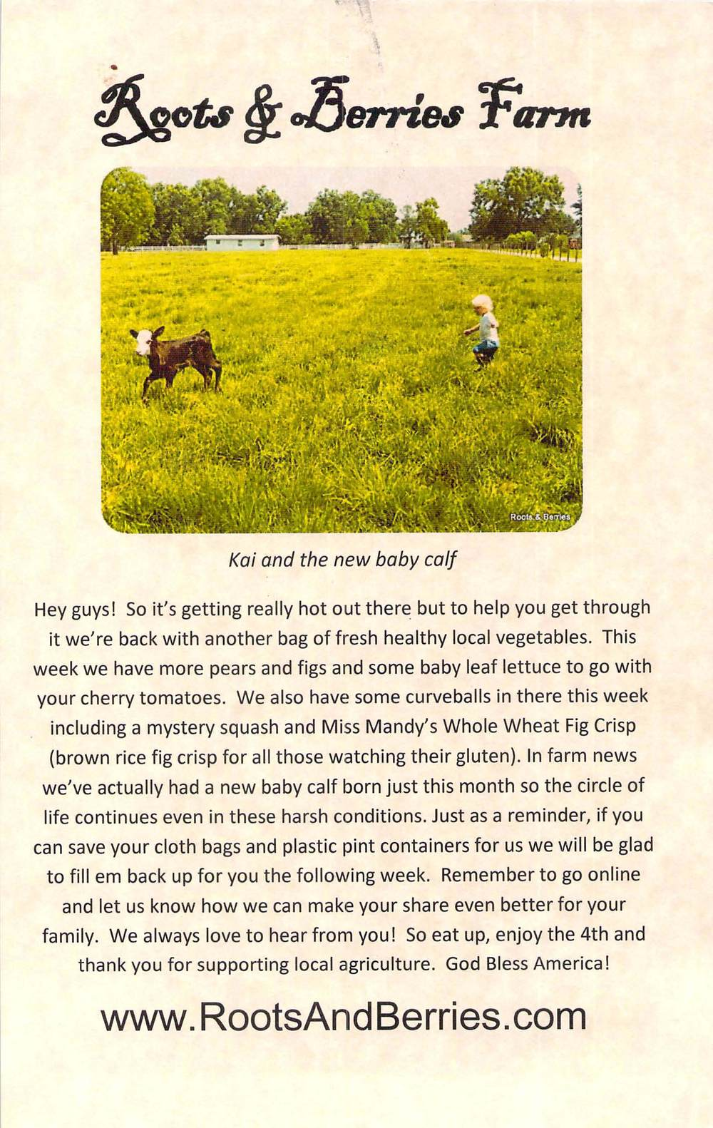 Roots & Berries Newsletters_Page_07.jpg
