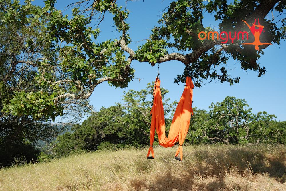 omgym_tree