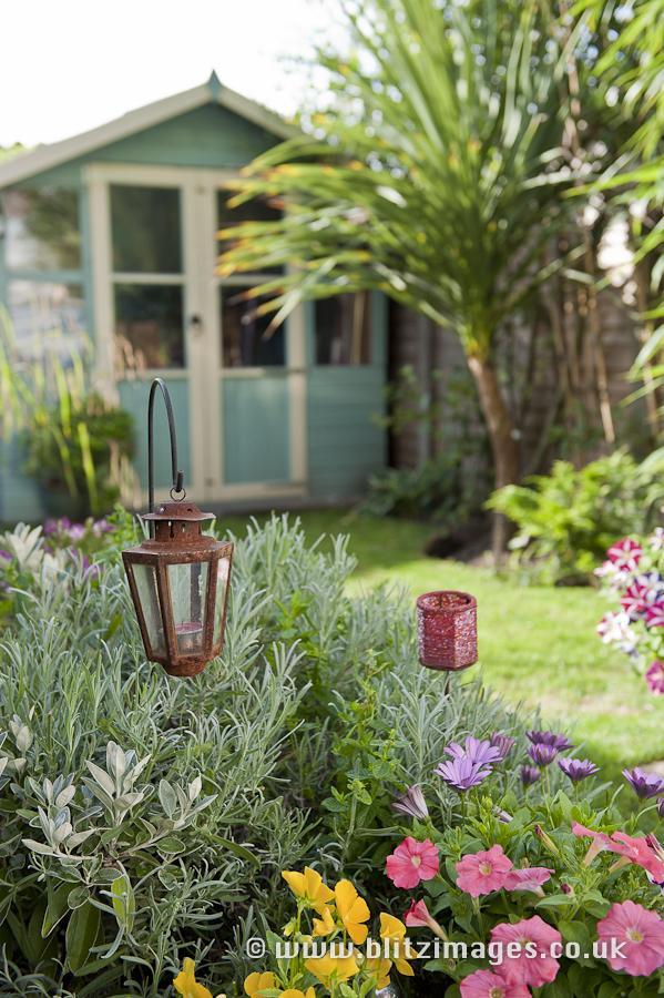 Lisi's back garden