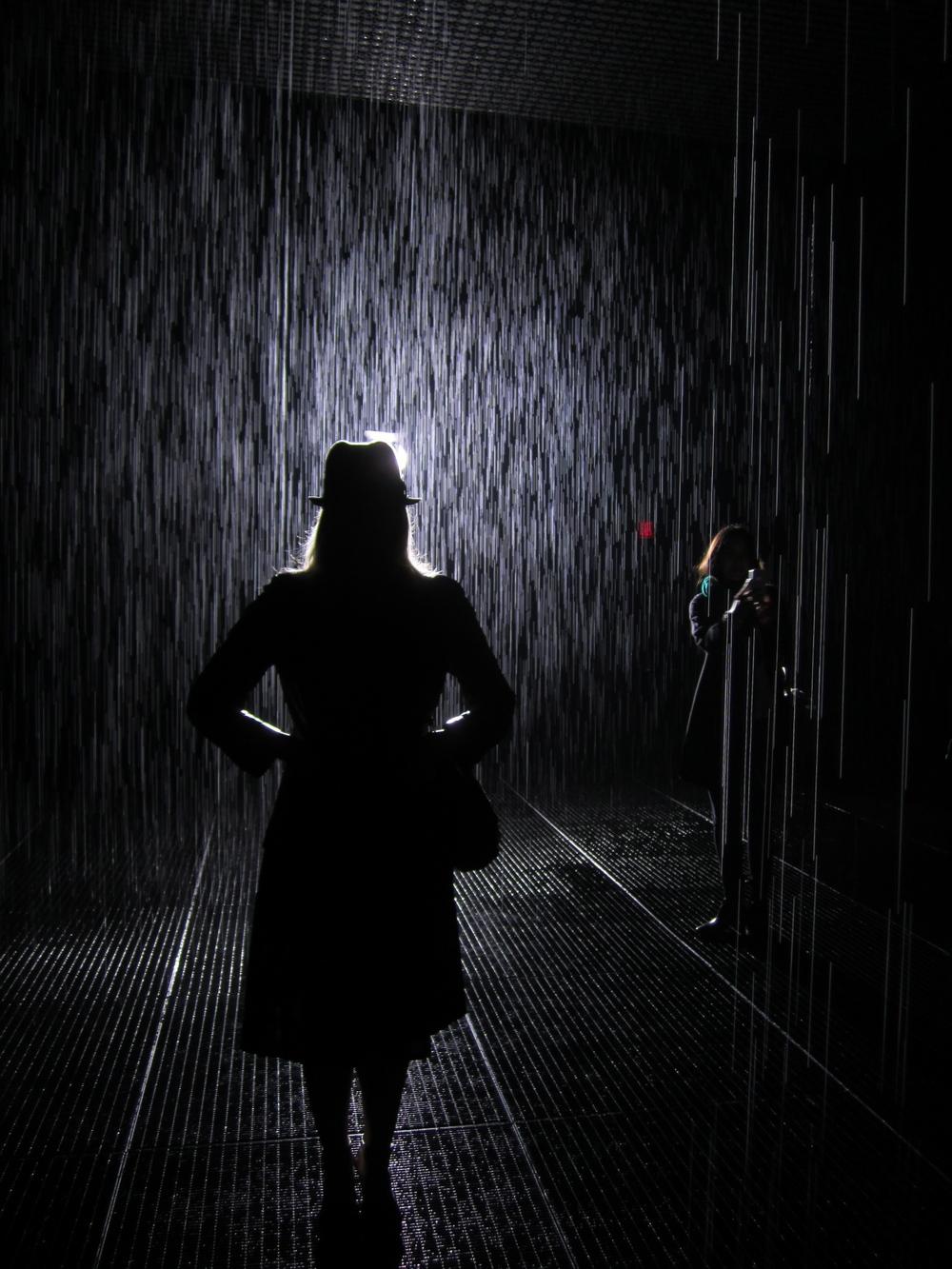 Rain Room. Diagnosis...Meh.