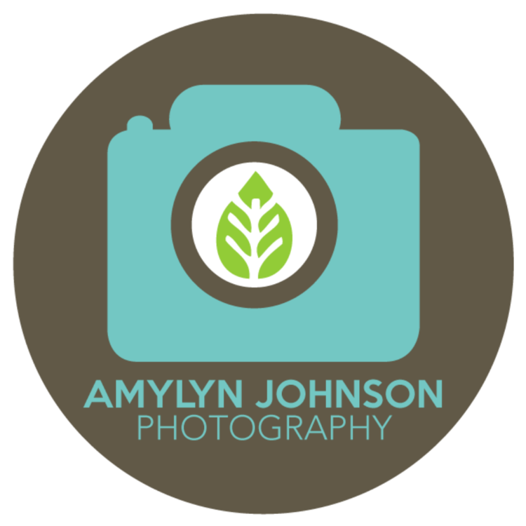Amylyn Johnson Photography