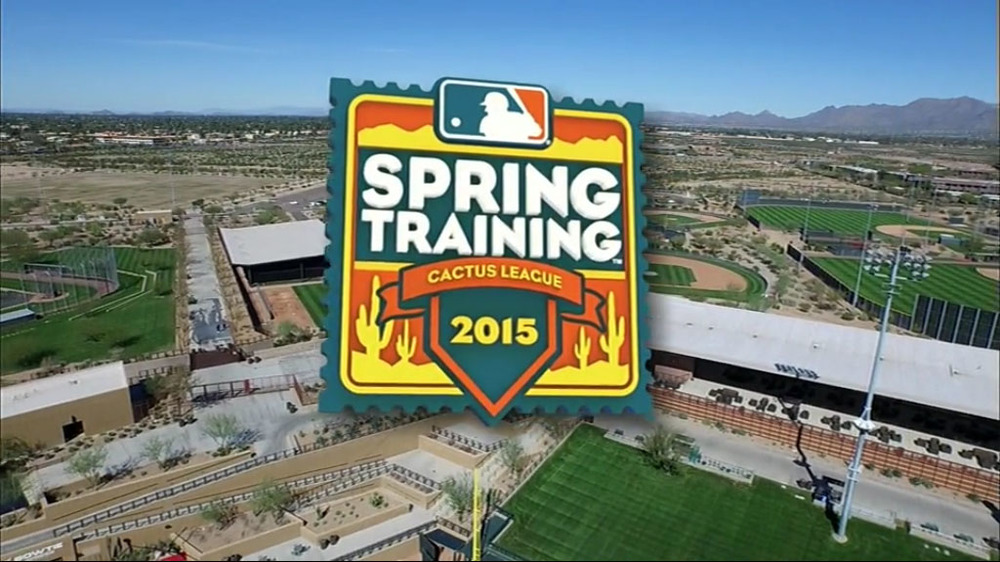 Spring_Training_Graphic_Package-5.jpg