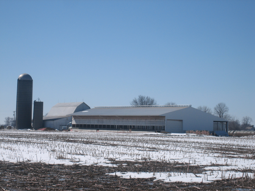 Cattle barn in Archbold, OH