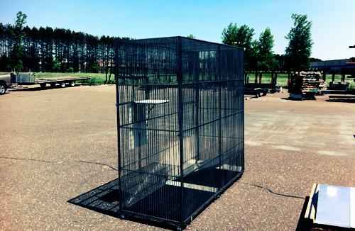 cage3.jpg