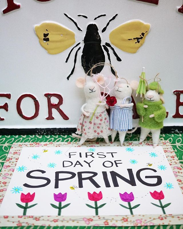 Happy First Day of Spring! 🦋 🌺 🐝