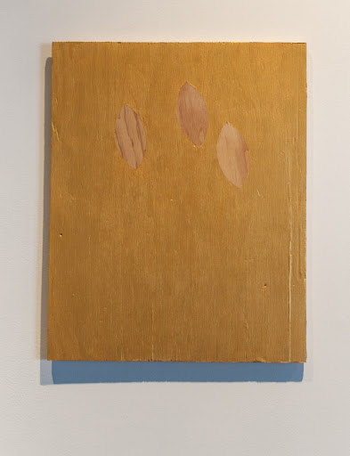 Justyn Hegreberg, Grade BB Gold Painting (with three plugs) 2012, acrylic on plywood, 19.25 x 15.5""