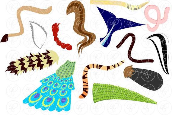 animal tails art work.jpg