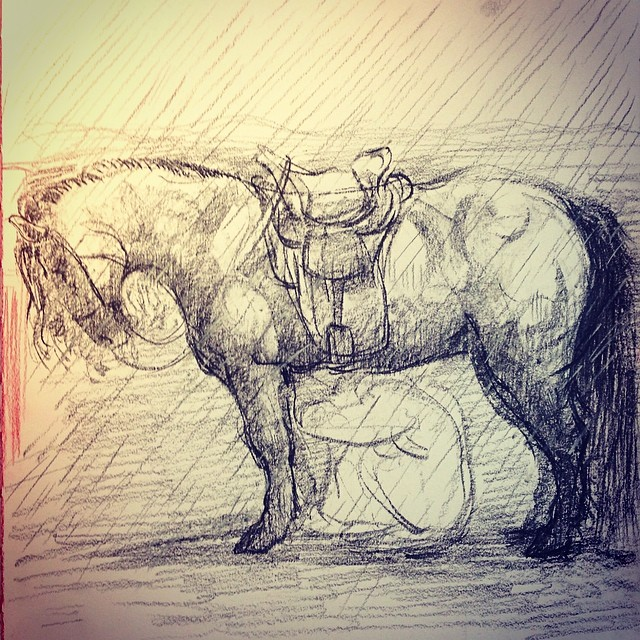 Study for a new painting #sketch #drawing #horse #horsedrawing #monglianhorse