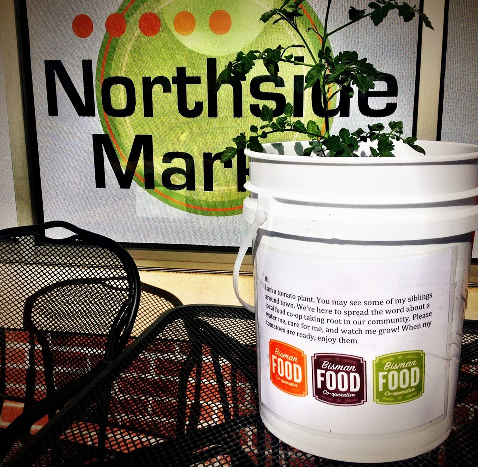 Our tomato bombs have been spotted all over town! Thank you Northside Market for adopting one and showing your support for the Co-op.