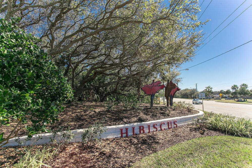 Hibiscus-f102-86.jpg