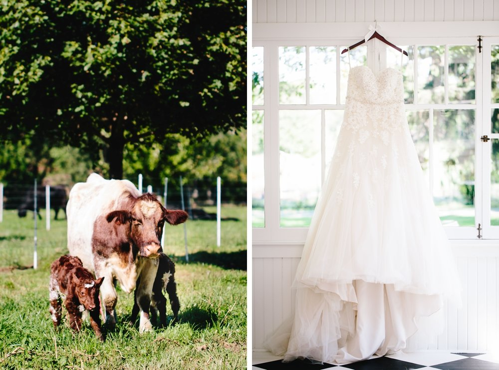 chicago-fine-art-wedding-photography-rush4