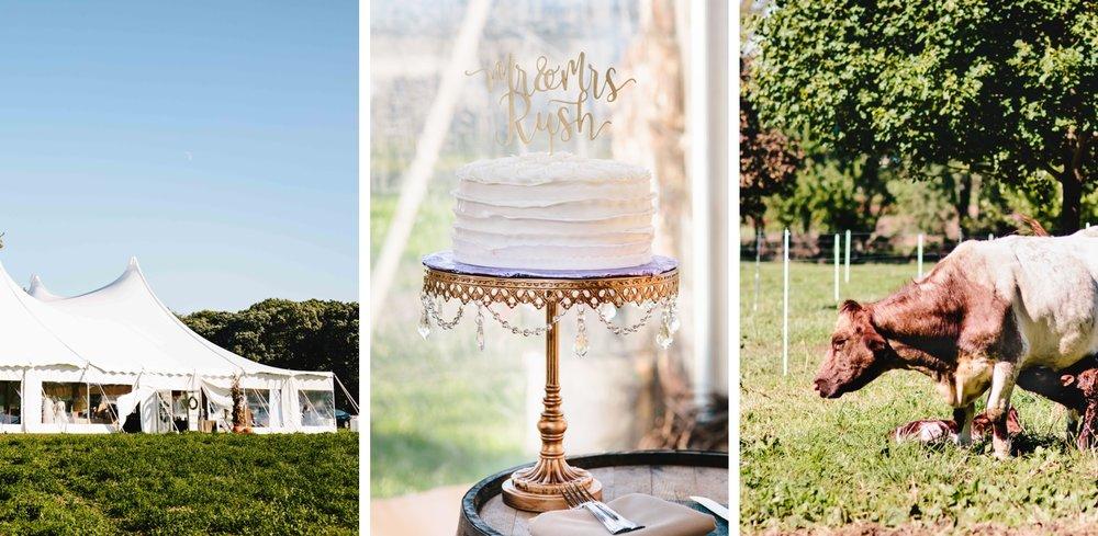 chicago-fine-art-wedding-photography-rush2