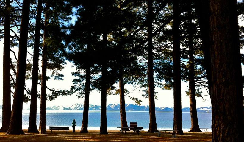 Sam_at_lake_tahoe.jpg