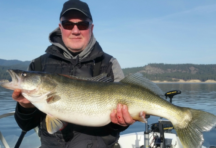 Kirby's 15 pound 12 ounce walleye