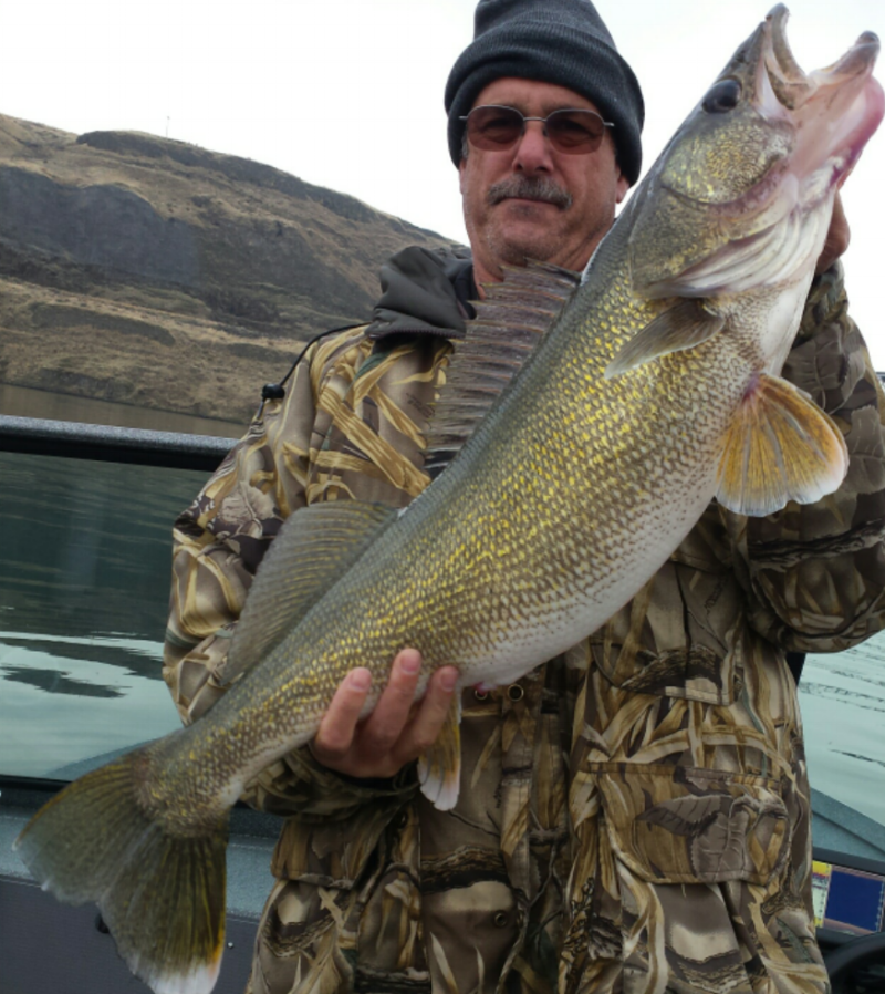 Joe released this huge walleye.