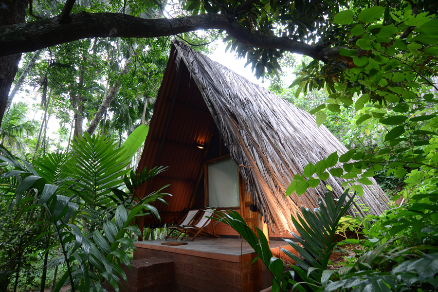 My sweet abode in Sindhudurg - I was in an enchanted land!