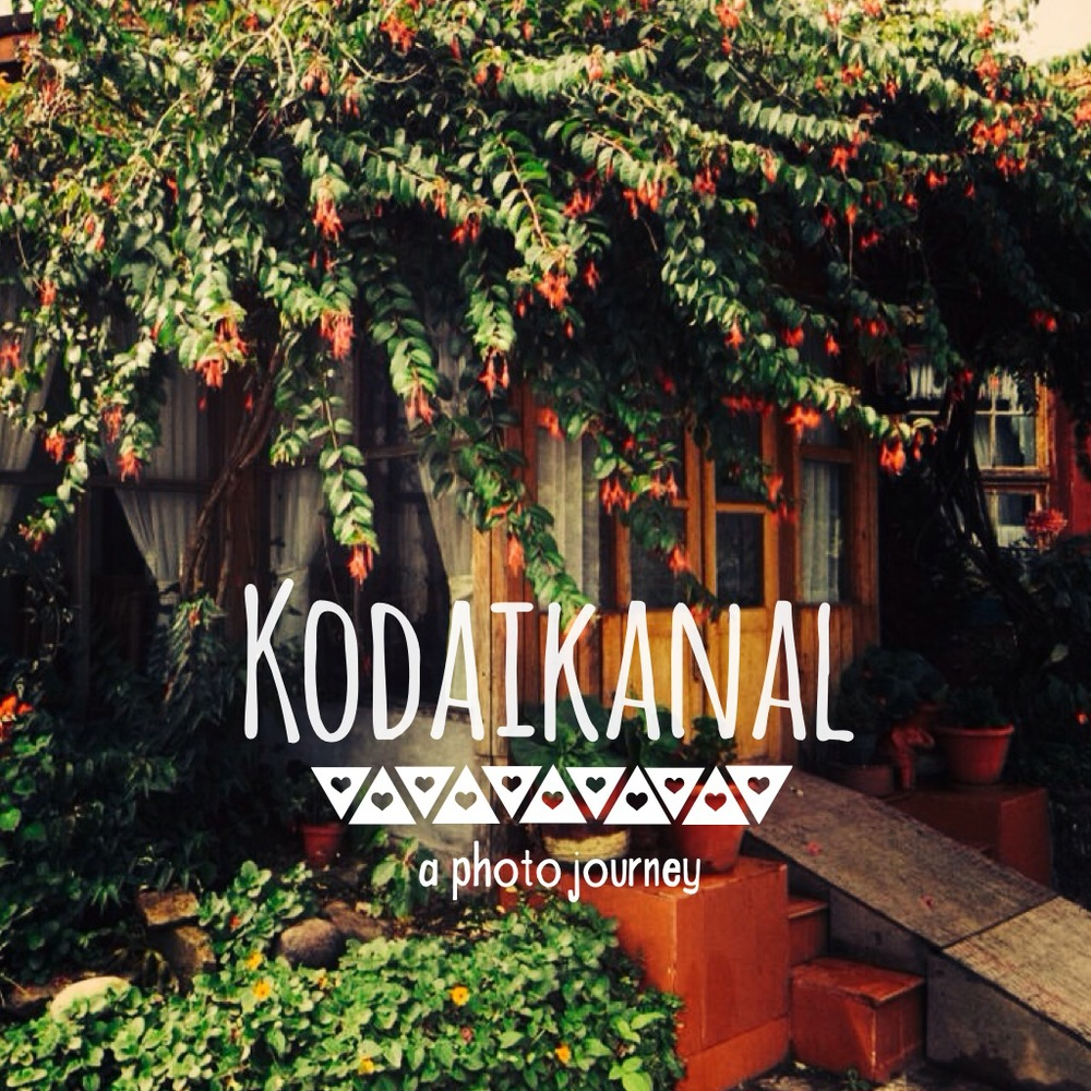 kodaikanal where to stay