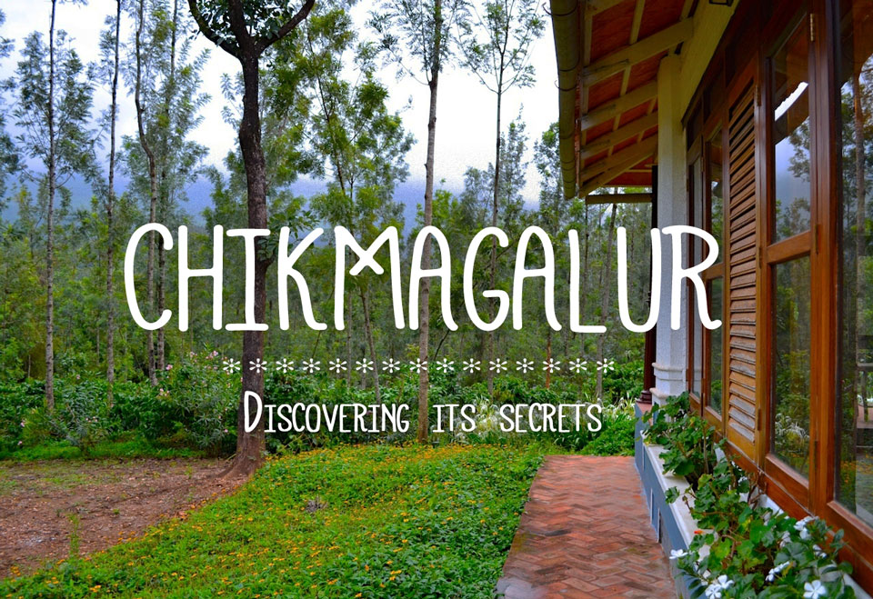 unique experiences in chikmagalur