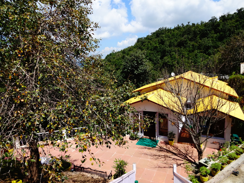 boutique hotels in kumaon