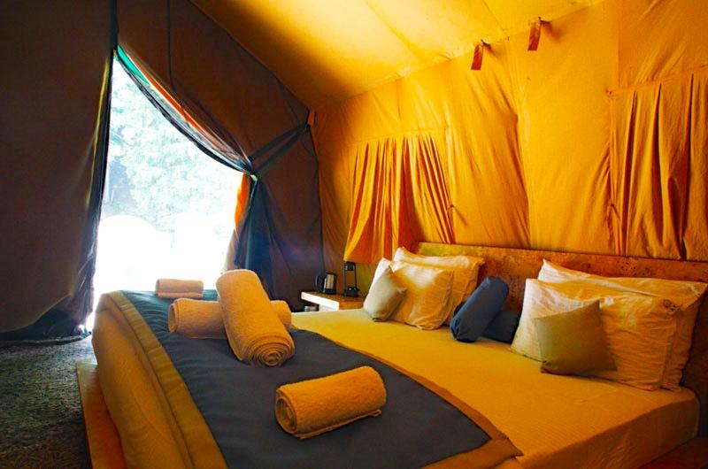 room sonamarg.jpg