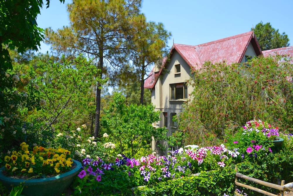 kasauli boutique hotels