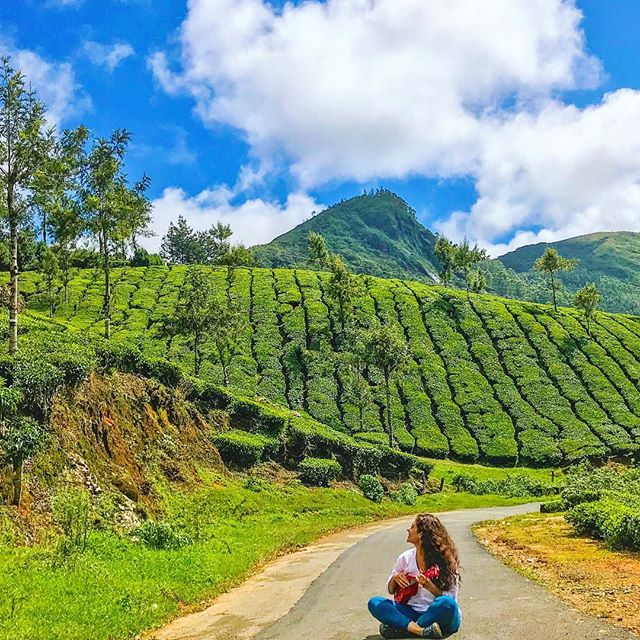 Blue skies, lush greenery and my beloved ukulele! I love singing to the mountains and the skies and thanking them for their splendour. That's exactly what I did in Munnar with the help of a few friends who were guarding the road to ensure I don't get run over 😃🎸 . . #travel #instatravel #travelgram #india #indiatravel #indiatravelgram #kerala #momentsofmine #picoftheday #photooftheday #wanderbug #wanderlust #neverstopexploring #lifeofadventure #liveauthentic #traveldeeper #travelstoke #traveler #traveling #loveindia #lovetheworld #naturelovers #darlingescapes #dametraveler #beautifuldestinations #sheisnotlost #keralatourism #munnar #roamtheplanet