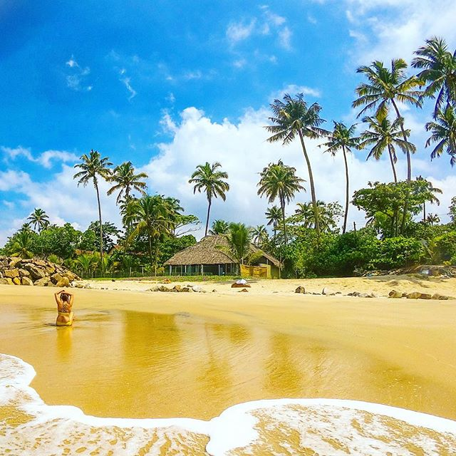 Golden sand, blue skies, a sleepy coastal village and crisp sunshine. The beaches of Kerala are some of the best in India and I feel so blessed to be living in this paradise 🙏 . . Get in touch with me to discover your private slice of paradise 🏝 🌊 . . #travel #instatravel #travelgram #india #kerala #beachlovers #naturelovers #lifeofadventure #liveauthentic #traveldeeper #darlingescapes #wanderlust #wanderbug #beautifuldestinations #neverstopexploring #traveler #traveling #loveindia #explore #mytinyatlas #keralatourism #beach #tropicalliving #roamtheplanet #shetravels #dametraveler