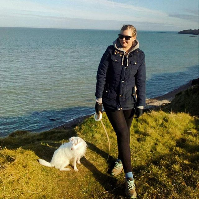 Spring ready☀️💛 #Ireland #Holly #view #puppy