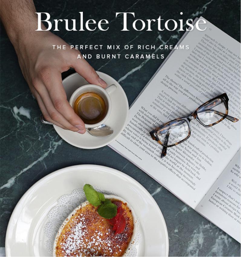 CS-BruleeTortoise-Newsletter.jpg