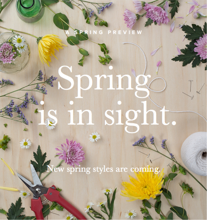 Spring Preview.jpg