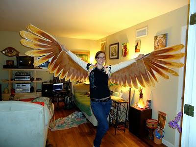 Phoenix-WingsCompleted002.jpg